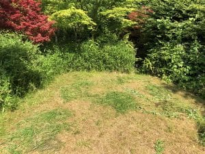 3 Signs that You Need Lawn Sprinkler Repair