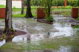 Signs that You May Need Yard Re-Grading