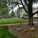 Lawn Sprinkler Repair in Raleigh, North Carolina