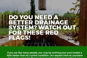 Do You Need a Better Drainage System? Watch Out for These Red Flags! [infographic]